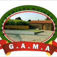 G.A.M.A.