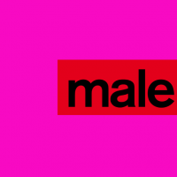 Male Model Corp